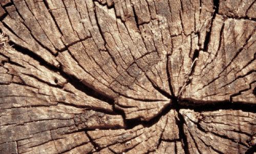 Badematte Holzstruktur
