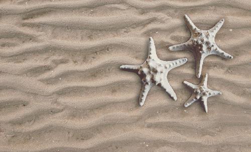 Badematte Sand mit Seesternen